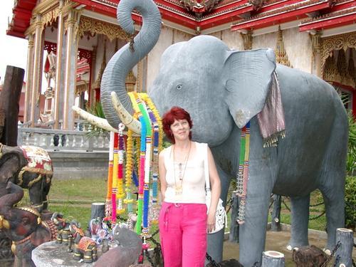 загадай желание со слоном