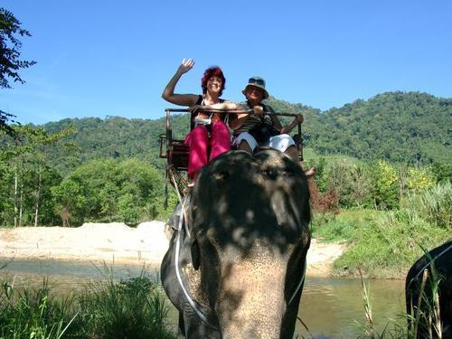 Я и слон))