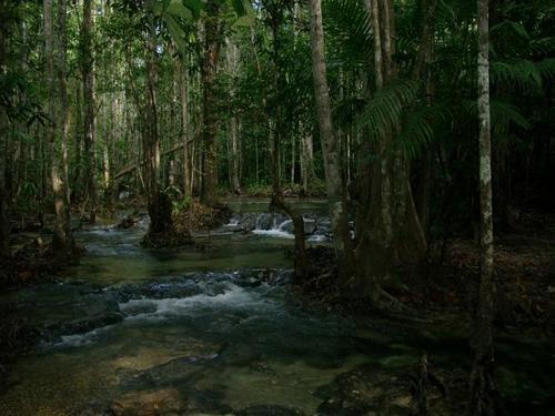 Виды Тайланда
